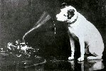 """Dog looking at and listening to a Phonograph"""